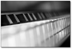 Piano (cabe26) Tags: blackandwhite music white black macro monochrome up closeup keys key close tube tubes piano instrument extension pianos instruments extensiontube musics extensiontubes