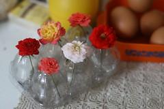 ovo florido (super_ziper) Tags: flores flower box handmade flor craft plastic caixa eggs recycle reciclagem decoração vaso tutorial pap plástico ovo ovos enfeite embalagem reaproveitamento superziper