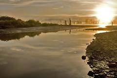 Pitt River Morning 1 (showbizinbc) Tags: mist fog sunrise river golden britishcolumbia mapleridge portcoquitlam pittriver pittmeadows mistymorning