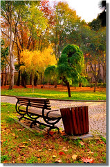 A Tribute To My Inspiration; IMAPIX   (HDR) (Kuzeytac) Tags: road park wood november autumn red orange brown color tree green fall nature public grass leaves yellow stone rural forest turkey garden bench season golden oak garbage october colorful day alone pattern view path empty bank sunny ground nobody scene istanbul can foliage cobble cobblestone willow silence serene 90 hdr fatih landscpe gulhane topshots the4elements natureplus impressedbeauty photosandcalendar natureandpeople worldwidelandscapes natureselegantshots 100commentgroup panoramafotogrfico panoramafotografico saariysqualitypictures greatshotss contacgroup doublyniceshot theoriginalgoldseal mygearandme flickrsportal