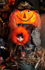 Jade and Mr. Pumpkin... good friends