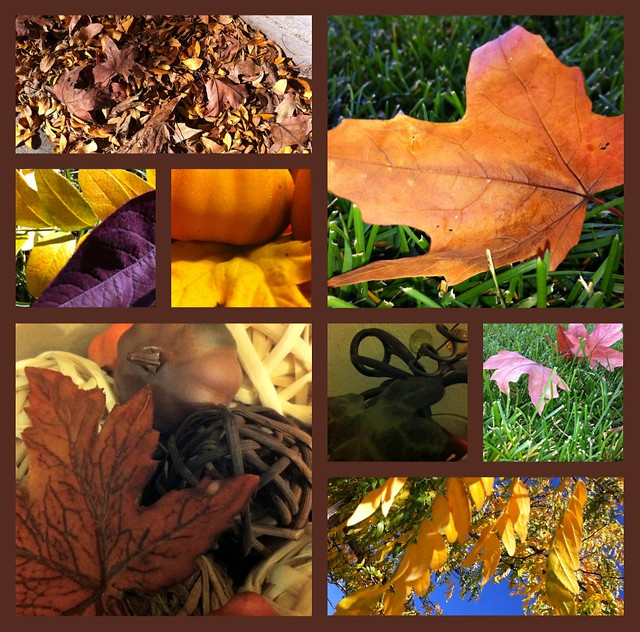 Fall1Collage