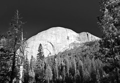 Half-Dome from Little Yosemite