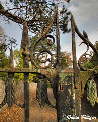 Wrought Iron Gate, Castle Grounds, Antrim (PhotographNI - David Milligan) Tags: castle river wroughtiron bbc northernireland northern dereliction countyantrim antrim hs10 cs5 bbcni northernirelandtouristboard bbcnorthernireland picturesofireland castlegroundsantrim sixmileriver digitalireland photographni davidmilligan bbcpictureeditingteam bbceditors bbcpictureeditors