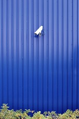 (Heidelknips) Tags: camera ikea google bush watching security minimal boring streetview d90