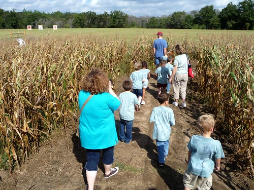 Corn Maze Field Trip