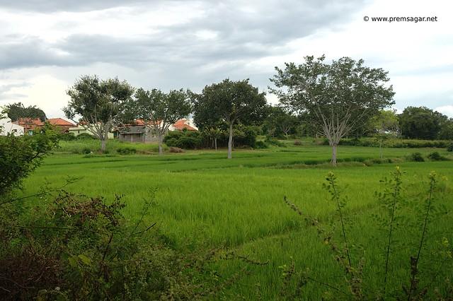 Rural India