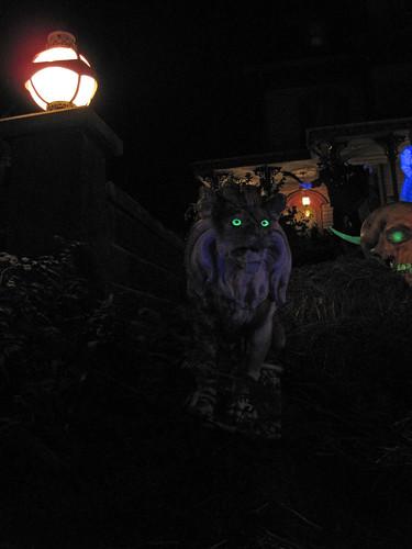 Phantom Manor at night