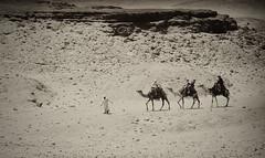 Viaje al pasado (Manolo Garca (Turrican)) Tags: travel egypt cairo verano egipto vacaciones