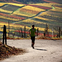 Around the corner (skubmic) Tags: november autumn woman color colour girl sport yellow vineyard wine weekend walk 11 grape rotenberg sportive 17c skubmic undertrkheim weingrtle