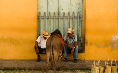 Two men and a donkey (Channed) Tags: street travel men cuba donkey trinidad cuban streetview cubanpeople flickrchallengegroup flickrchallengewinner chantalnederstigt