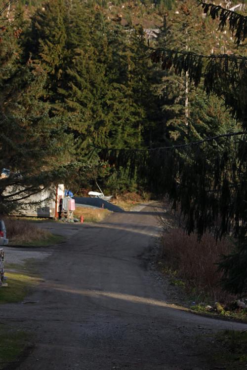 view of Bunard Street, Kasaan, Alaska