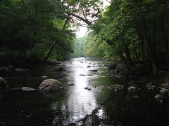Musconetcong River, Stephens State Park
