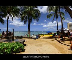 Life At A Beach (Fionn Luk) Tags: ocean blue summer usa tree green beach water canon hawaii us sand unitedstates waikiki united wave august palm palmtree 5d honolulu states waikikibeach luk fionn fionnluk