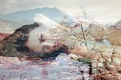 Lentamente desde tu flor en llamas... (conejo721*) Tags: argentina mujer amor paisaje palabras mardelplata poesía poema sentimientos conejo721 tamaraprimus truthandillusion
