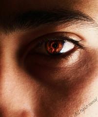 (Mouin.M) Tags: red brown macro eye fire