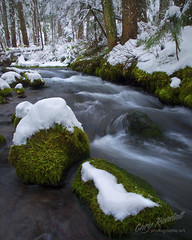 A Little Zigzag Frosting (Gary Randall) Tags: snow oregon creek river zigzag wonter littlezigzag garyrandall dsc42272