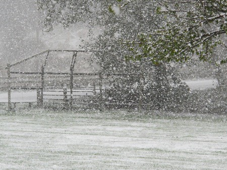 Snow Falling on Baseball Field