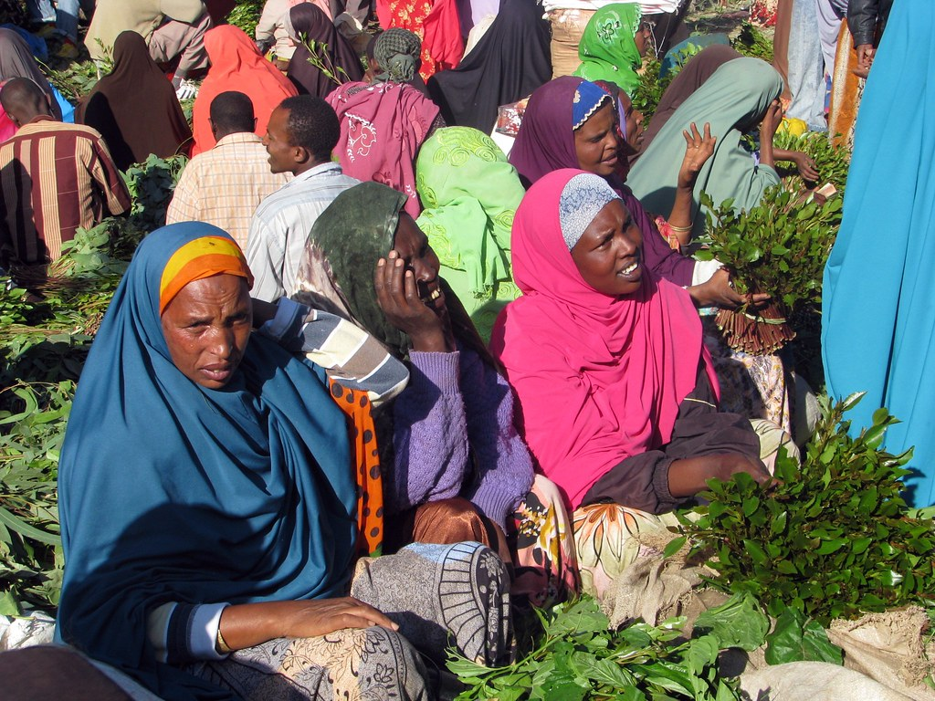 research papers khat Research into the social impacts of khat, there still remains a lack of data   literature from animal studies on khat and cathinone, which have.