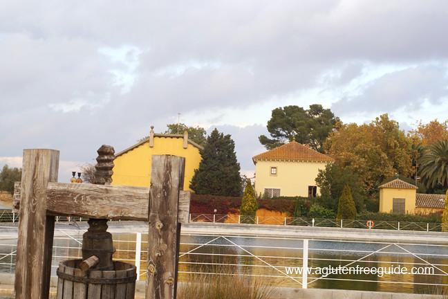 web Torres Winery Vilafranca del Penedes