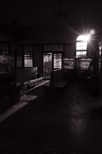 the light in the station