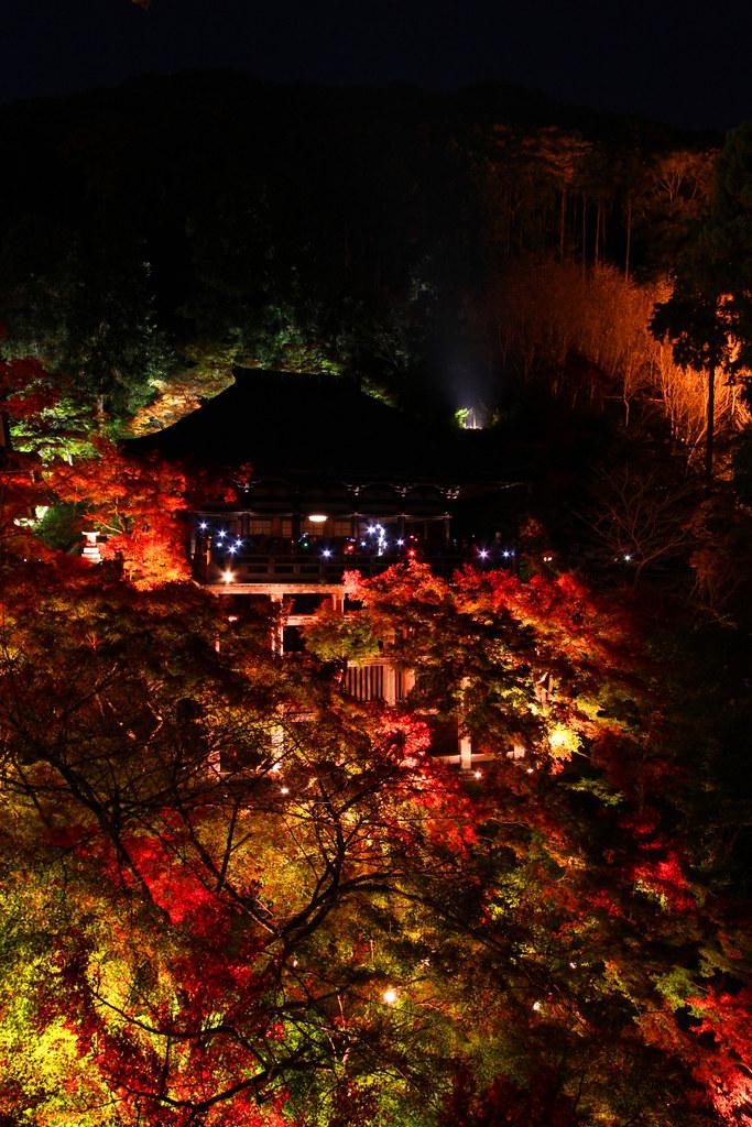 Kiyomizu-dera Illumination 2010  (5)