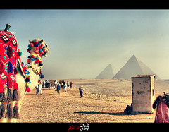 "Cairo| Impressive.! (Ohoud ""Oudi"") Tags: trip sphinx bronze ancient flickr tour egypt award east cairo pyramids middle giza wonders saqqara khufu  khafre   oudi menkaure  mywinners oudiphoto oudifoto"