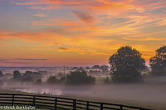 Summer sunrise in Scott County, KY (Ulrich Burkhalter) Tags: 20170703 flowergarden home homestead sunrise imgp94483pedited3 scottcountyky kentucky visipix