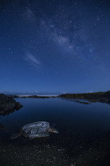 Sea Turtle N Paradise (Rigsby'sUniquePhotography) Tags: seaturtle milkyway galaxy canon sandisk hawaii volcano nationalpark pacificocean landscape earth nature explore world animals aaronrigsby photography photographer
