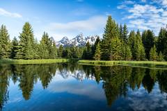 Almost perfect. (Tracey Rabjohns) Tags: 2017 grandtetonnationalpark schwabacherslanding wyoming mountains pond reflections snow trees