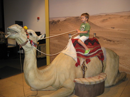 Ezra on the camel