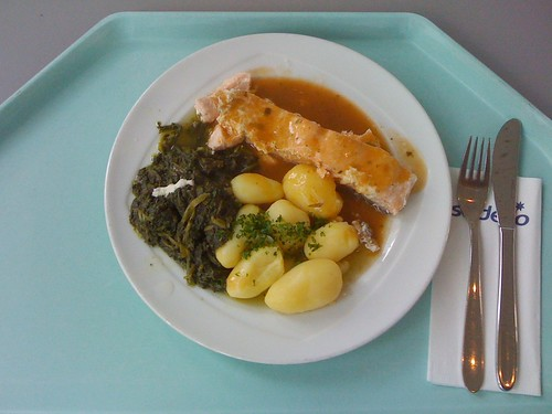 Lachs auf Blattspinat / salmon on leaf spinach
