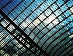 (Sky) Lines