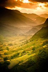 """A Land of Wonder"" Vietnam~Asia~Travel~Rice~Photography~Portfolio (Dan Ballard Photography) Tags: world travel sunset mountain mountains dan nature water beautiful sunrise landscape photography amazing asia gallery photographer rice pics outdoor magic harvest best vietnam photograph land fields prints ballard ricepaddies portfolio wonderland ricefields sapa paddies gallary photograpy magicland outdoorphotographer danballard danballardphotography danballardphotogarphy terrices riceterrices printforsell"