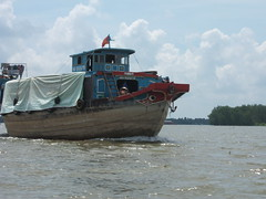 can tho (83) (pontfire) Tags: voyage street city trip travel vacation portrait urban woman holiday plant man flower men fleur animal fruit plante river children boats monkey boat asia vietnamese ship snake femme ships bateaux frog vietnam crocodile serpent bateau enfant saigon mekong homme grenouille cantho hochiminh fleuve singe