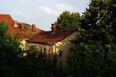 Stara kuća (Weingarten) Tags: serbia srbija serbie serbien negotin