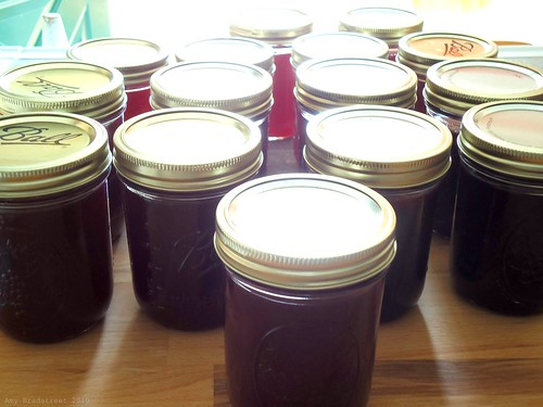 9.5 pints grape jelly, 6 pints crabapple jelly