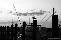 Black and White Sunset at Belmar (Michele Ford) Tags: sunset sky water marina maritime belmar newjerseyusa