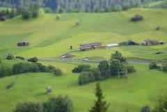 _IGP3550 Kopie (jens.lilienthal) Tags: summer vacation austria sterreich sommer urlaub august september alpen tyrol innsbruck 2010 oberland inntal tiroler tirl oberes thechallengefactory
