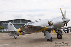 N20MD HAWKER SEA FURY TT20S 41H 636070 PRIVATE- 100905 Duxford - Alan Gray - IMG_1780