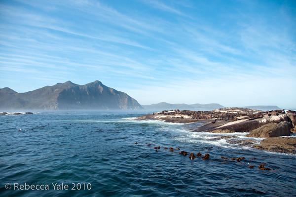 RYALE_Cape_Town-77