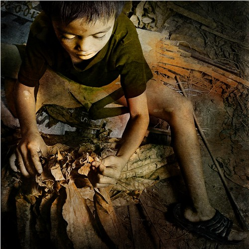 Child Labor in the Tobacco Industry by Sherwin Ballesteros