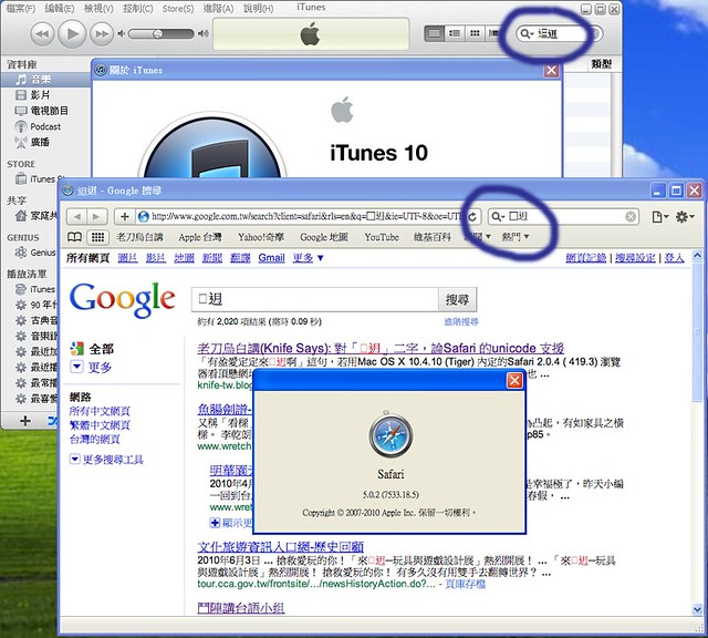 iTune 10 vs. Safari 5.0