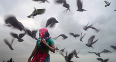 birds (nandadevieast) Tags: travel woman india birds gujarat dwarka anuragagnihotri nandadevieast dwarkadham gomtighat