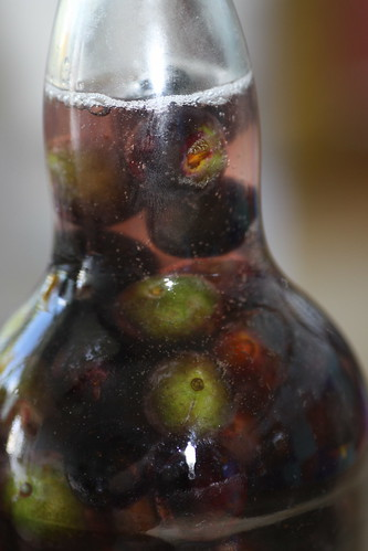 .........make sloe gin!