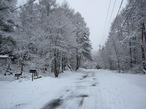 近くの道路の積雪 2010年3月8日朝 by Poran111
