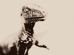 Dinosaur (259/365)