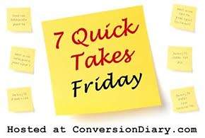 Friday 7 Quick Takes