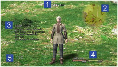 Beginner's Guide to Final Fantasy XIV Online