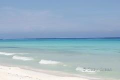 Playa05 (Ozzy Green) Tags: ocean blue sunset sea moon beach azul umbrella atardecer mar sand chair playadelcarmen playa luna arena silla parasol cancun caribbean sombrilla caribe playacar mamitas mexico oceano ozzygreen